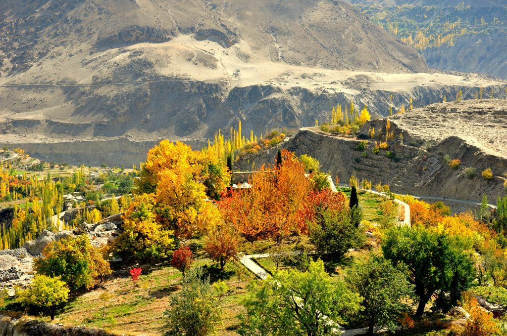hunza extended