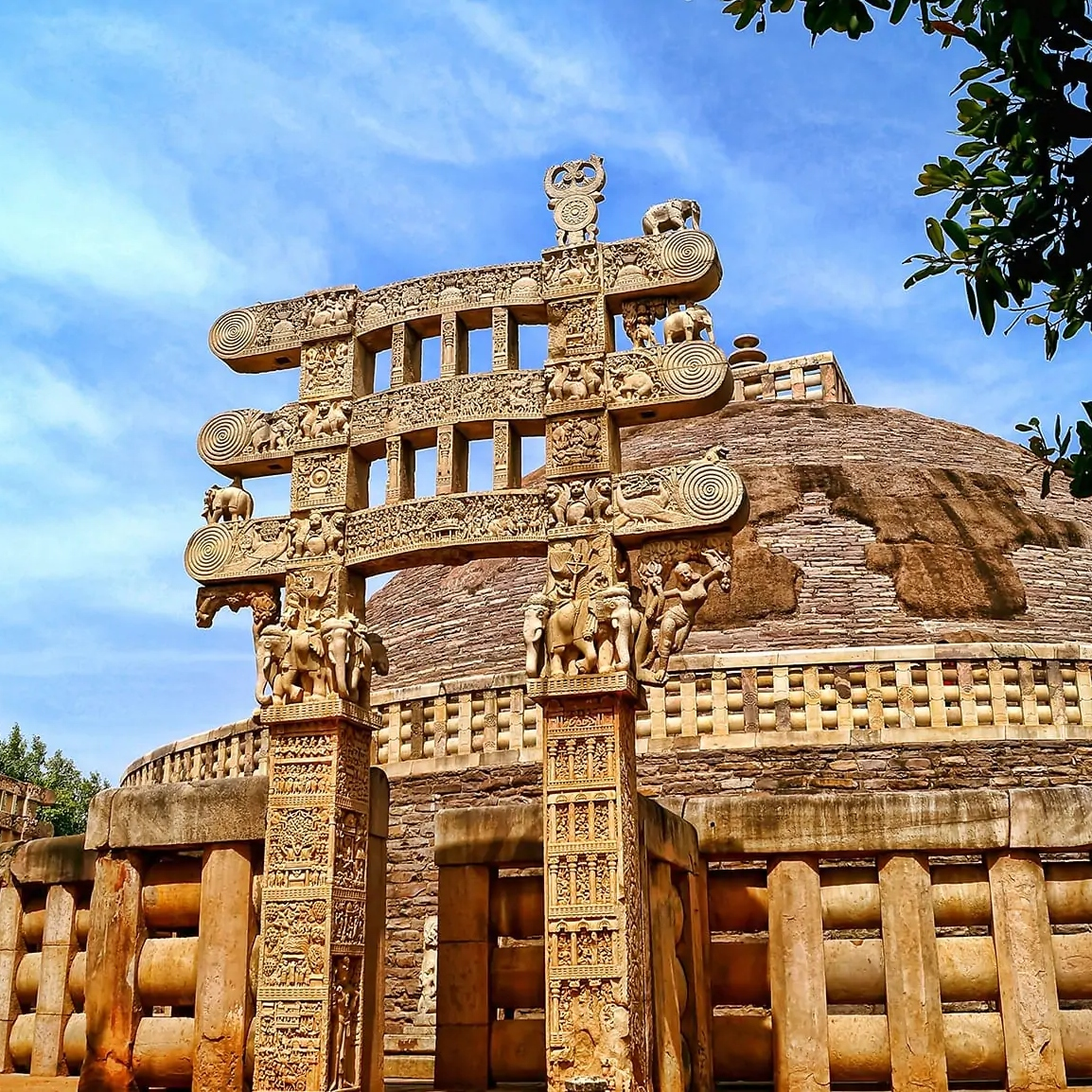 maurya-dynasty